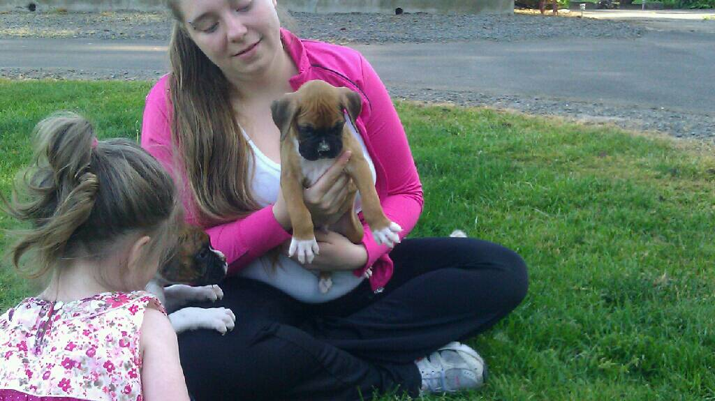 New pics of our pup axle at 6 and a half weeks old-1367738192021.jpg