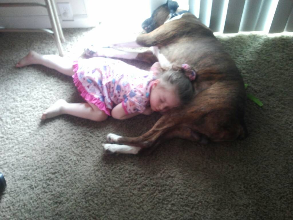 Some pictures of my best friend Duke (rip)-1385786701347.jpg