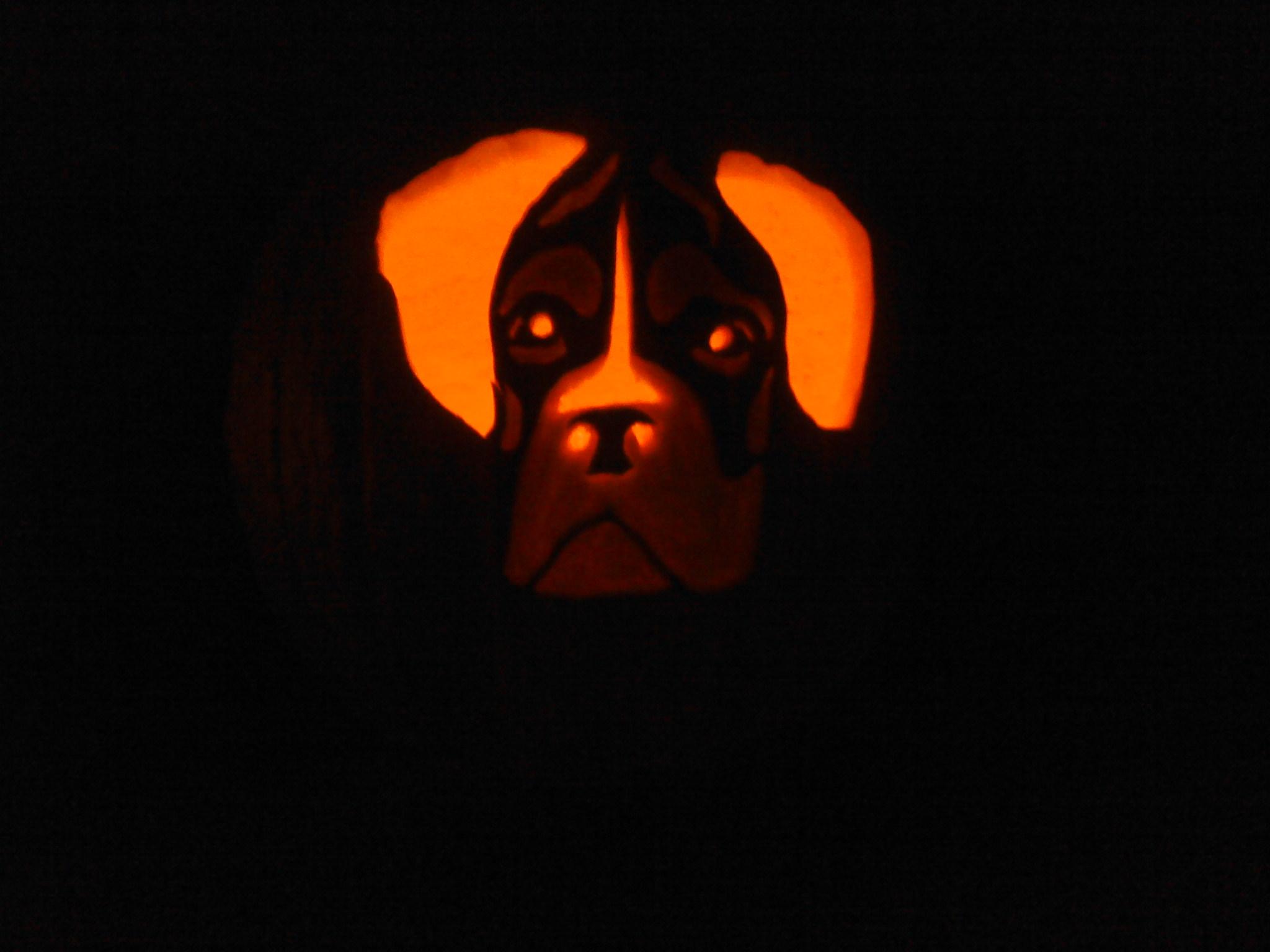 pumpkin carving stencils dog. boxer pumpkin stencil-boxer3.jpg carving stencils dog p
