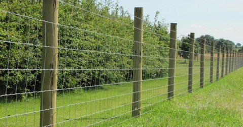 best type of fence-image.jpg