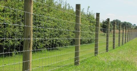 best type of fence-image.jpg