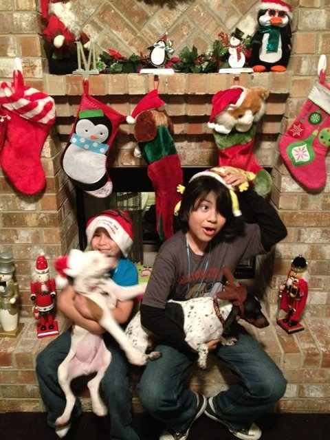 Christmas pics-imageuploadedbypg-free1355625018.002671.jpg
