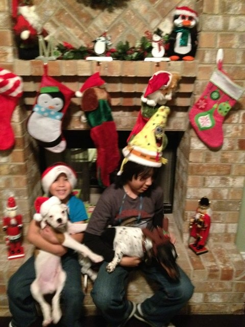 Christmas pics-imageuploadedbypg-free1355625029.752127.jpg