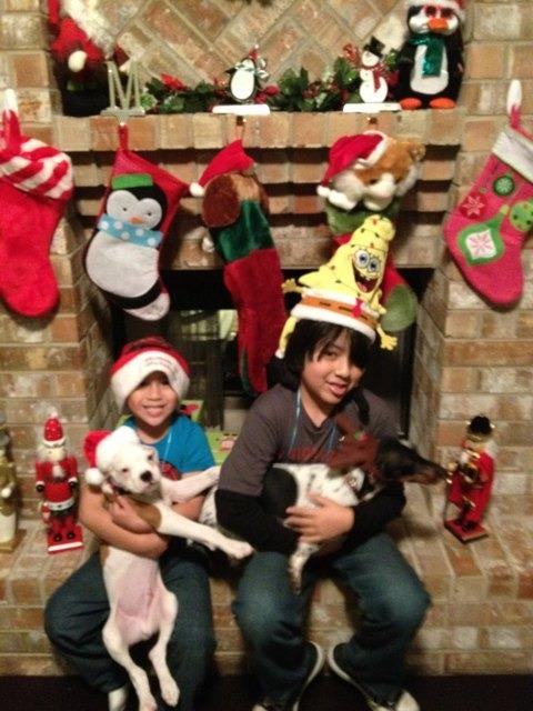 Christmas pics-imageuploadedbypg-free1355625043.814986.jpg