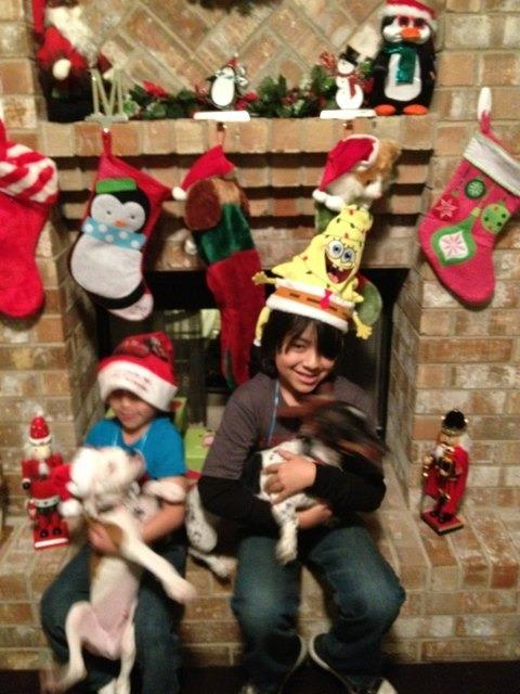 Christmas pics-imageuploadedbypg-free1355625058.130028.jpg
