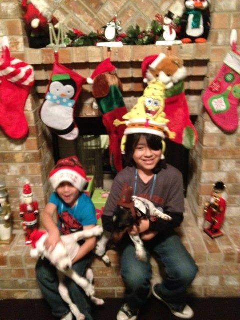 Christmas pics-imageuploadedbypg-free1355625069.979097.jpg