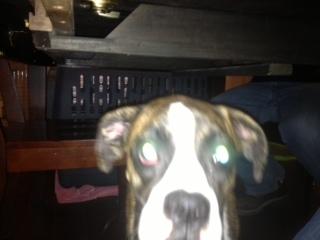 Jessie's Eye-jessie-2.jpg