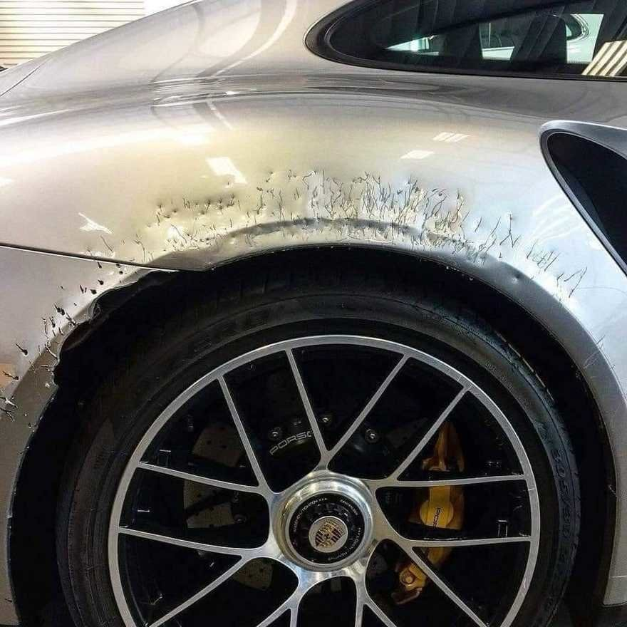LOL ... WL GSD's and Mal's for average Pet Owners??-mal-vs-porsche.jpg
