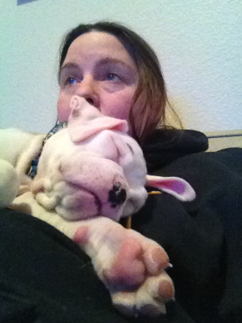 I am a new Boxer mom!-muriel12.jpg